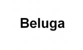 Чехлы для лодочных моторов Beluga (2)