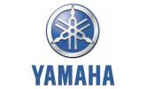 Стекла для квадроциклов Yamaha (6)