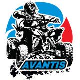 Стекла для квадроциклов Avantis