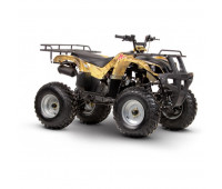 Стекло на квадроцикл Irbis ATV 150U