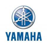 Стекла для снегоходов Yamaha